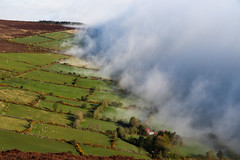 Creeping (A Costigan (on hols :) )) Tags: fog foggy mist misty carlow ireland irish fields countryside rural outdoor nature canoneos canon80d