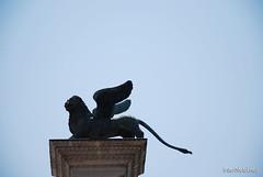 Венеція Площа Святого Марко InterNetri Italy 27