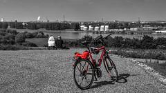 Blick auf Duisburg - View on Duisburg (lutzmarl) Tags: halde ruhrpott ruhrgebiet kohle erz rhein flus personen fahrrad rot cube