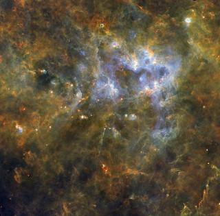 Hidden secrets of a massive star-formation region