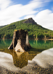 In Calm. In Motion. (John Westrock) Tags: rattlesnakelake longexposure treestump reflection nature clouds motion water washington pacificnorthwest canoneos5dmarkiii canonef2470mmf28lusm bwnd1000x