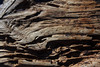 driftwoodIMG_6099 (mandyerush) Tags: pebbles seaweed sea minch isle skye otterburn driftwood lesser celadine crustacean beach fairy