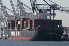 YM MODERATION - YANG MING LINE - at Newark, New Jersey, USA. April, 2018 (Tom Turner - NYC) Tags: ymmoderation yangming yangmingline ship vessel cranes containerport containership cargo dock docked pier bay newarkbay newark newjersey gardenstate newyork usa unitedstates tomturner spot spotting water waterway marine maritime pony port harbor harbour transport transportation