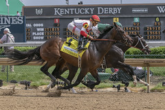 Company Up Front (Casey Laughter Media) Tags: 2018copyright churchilldowns louisville kentucky kyoaks alwaysdreaming alysheba kentuckyderby kentuckyderbywinner bodemeister canon canon7dmii canonphotography canonusa canonlens action actionphotography