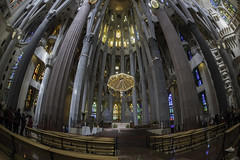 Sagrada Familia (derepy) Tags: barcelone églises church