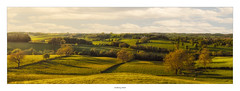 Muggington, Derbyshire (AnthonyCNeill) Tags: landscape panorama pano sunset evening light shadows hills trees sky sunny derbyshire english countryside nikon d7200 35mm dx vista paysaje campo grüne
