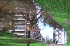 Recordando una ¿realidad? (Manutero) Tags: arbol reflejo agua water park parque tierra inundado flooded tree niña girl