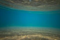 IMG_1487A (Aaron Lynton) Tags: wave waves shorebreak cano canon 7d maui hawaii summer fu fun schools out spl