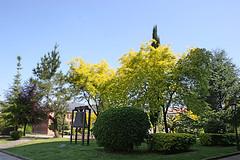 Llamaquique (Jusotil_1943) Tags: 220518 campana arboles parque oviedo
