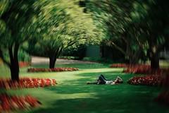 Yesterday (theelectricmango) Tags: spring portrait swirl helios bokeh bokehlicious green garden canada glorious