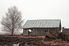 Barn House On The Rainy Fields (k009034) Tags: 500px wooden copy space europe finland outdoors scandinavia tranquil scene bare tree barn house birch branches building countryside exterior farming fields landscape no people old rain roof rural rustic spring wall weather wet agricultural farmhouse farm agriculture field teamcanon copyspace tranquilscene baretree barnhouse nopeople