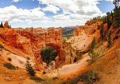 Natural Bridge, Bryce Canyon (Karen_Chappell) Tags: travel utah usa landscape orange arch rocks scenery scenic trees brycecanyonnationalpark nationalpark