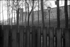 (k.e.k.) Tags: leicam6 cinestillbwxx film analog bw monochrome blackandwhite cinestill bwxx doublex iso250 leica m6 rangefinder summicron 50 rigid rigidii oslo norway norge