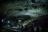秋芳洞 #5ーAkiyoshi-Do (Huge stalactite cave) #5 (kurumaebi) Tags: yamaguchi 美祢市 秋芳洞 nikon d750 nature landscape cave 洞窟 鍾乳洞 秋吉台