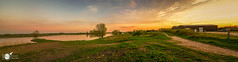 A riverside sunset (Robert Stienstra Photography) Tags: wageningen sunset sunsets sunsetporn sunsetmadness panorama panoramaphoto panoramic landscape landscapes landscapephotography gelderland outdoor waterscape waterscapes river riverbanks riverscapes skyscapes skyporn skies dutchlandscape