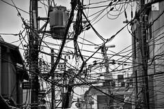 The web (David Bertholle) Tags: web toile electricité eclectric cable réseau net link d7200 kyoto japon japan blackwhite noiretblanc