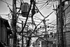 The web (David Bertholle) Tags: web toile electricité eclectric cable réseau net link d7200 kyoto japon japan blackwhite noiretblanc