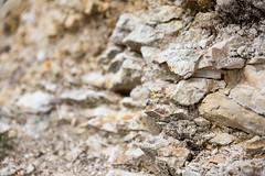 Chalk Cliff (DiggerDarren) Tags: chalk geology durdledoor rocks flint sigma24105f4art canon6d 2017 lulworth