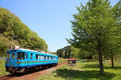 Local traveler (Teruhide Tomori) Tags: train kyoto japon japan amino kyotango railroad railway kyototangorailway 京都丹後鉄道 丹後半島 木津温泉 網野 京丹後 鉄道 dmu 日本 forest ktr