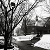 campus snowfall (jojoannabanana) Tags: 3652018 branches building library panasoniclumix path snowfall snow squareformat square university weather