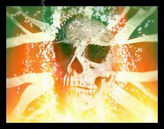 Union Jack (nigdawphotography) Tags: skull flag fire burning burn unionflag unionjack