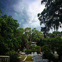 Bonaventure cemetery during wild weather (hollyelizabethwarren) Tags: georgia savannah cemetery bonaventure