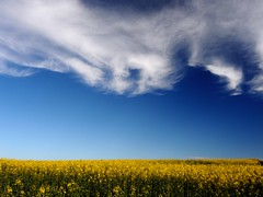 preetz_DSCN0594 (ghoermann) Tags: deu geo:lat=5419263219 geo:lon=1030500071 geotagged germany schleswigholstein wahlstorf wahlstorfhof spring sky