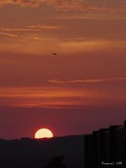 P1019830_b (daniellelallemand) Tags: sunset soleil coucherdesoleil toulouse lumixg9