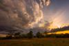 One Evening Sunset Series, No. 1 of 5 (thefisch1) Tags: sunset sunrise kansas horizon cloud interesting pasture sky tree