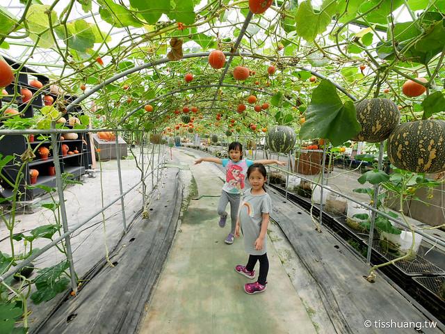 旺山休閒農場-1270037