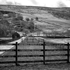Fencing (Missy Jussy) Tags: fence landscape lancashire scenery countryside unitedutilities grass path pumphouse reservoir piethorne piethornevalley fields trees hillside dogwalk walkinglandscape sky rochdale northwest views mono monochrome bw blackwhite blackandwhite 5d canon5dmarkll canon5d canoneos5dmarkii 70200mm ef70200mmf4lusm ef70200mm canon70200mm ogden