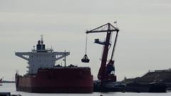 IJMUIDEN, THE NETHERLANDS (pwitterholt) Tags: ijmuiden haven harbour naviospollux bulkcarrier schip ship crane kraan coal kolen kust coast noordzee northsea sony sonycybershot sonyhx400 noordholland hoogovenkanaal