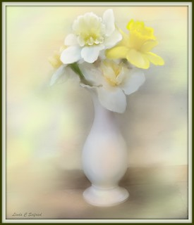 White vase with daffodils