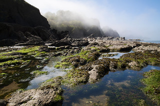 Rock Pool View Combe Martin