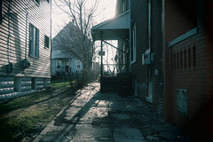 Evening Cut-back (david grim) Tags: birdtown lakewood cleveland oh ohio