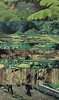 landscape on landscape #1 (ms. neaux neaux) Tags: dawnarsenaux analog collage scissors glue earth vintagenationalgeographics design fittedt 1959nationalgeographic landscapes idea