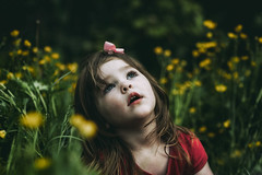 Grace (markfly1) Tags: girl daughter kids child children little lady daddy time playing long grass green yellow buttercups lost far away look dream dreamy soft focus shallow dof depth field lush dark shadows red nikon d750 85mm sigma art lens no place like home rural location countryside walk view happy kid smile smiler wonder