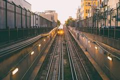 You Got Light in Your Eyes (Thomas Hawk) Tags: america chicago cookcounty illinois usa unitedstates unitedstatesofamerica wickerpark subway traintracks us fav10 fav25 fav50 fav100