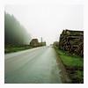 Road to Destruction - Kodak Porta 100T (magnus.joensson) Tags: sweden skåne eslöv winter rolleiflex 35 zeiss tessar 75mm kodak porta 100t exp c41 6x6 medium format 85b filter countryside wood log