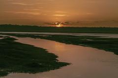 Sunrise after the flood (tmeallen) Tags: sunrise water lakeshore floodedlake lakendutu tanzania reflections orange risingsun southernserengeti eastafrica