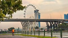 Singapore Flyer (Br@jeshKr) Tags: singapore singaporeflyer evening ride cycle goldenhour leading brajeshart road sky city