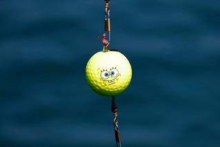 Spongebob goes to fish