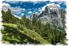 Le Wetterhorn depuis le sentier du First (jamesreed68) Tags: alpes alps suisse schweiz mountain grindelwald berne oberland nature wetterhorn canon eos 600d