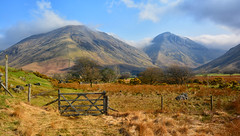 Kirk Fell and Great Gable from Wast Water (Joan's Pics 2012) Tags: kirkfell greatgable fromwastwater lakedistrict mountains gateway viewpoint grasses fences landscape pointedtops