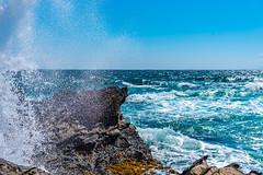 Wave splash (dayonkaede) Tags: wave splash rock ocean sea water blue sky landscape nature nikon d750 2401200mm f40 coast bay