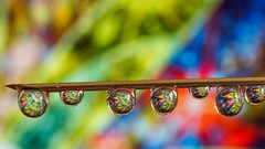 Droplets- 5107 (YᗩSᗰIᘉᗴ HᗴᘉS +17 000 000 thx) Tags: drop droplets water macro