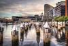 Docklands (paradigmblue) Tags: australia victoria cityscape etihadstadium sunset docklands melbourne au