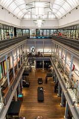Australian Museum (Manny Esguerra) Tags: australianmuseum exhibit museum