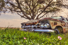 Humming Hearts (Wayne Stadler Photography) Tags: fineart vehicles automotiveart retro vintage rustographer automobiles abandoned classic derelict sedans car rusty cars rustography transportation automotive rust weathered texas rural imperial chrysler