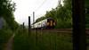 Northern Dawn (_J @BRX) Tags: 1j01 0519 leeds wiganwallgate northern arriva brighouse 22nd may 2018 spring yorkshire england uk nikon d5100 dmu sprinter train commuter green dawn sky fence class150 150211 diesel